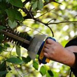 Person holding a hedge trimmer working on a bush